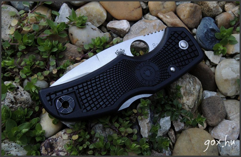 Spyderco, Native, C41BK