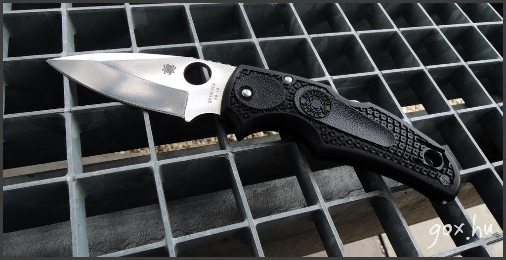 Spyderco - Native 3